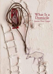 What is a Domicile