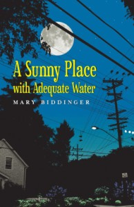 A Sunny Place with Adequate Water